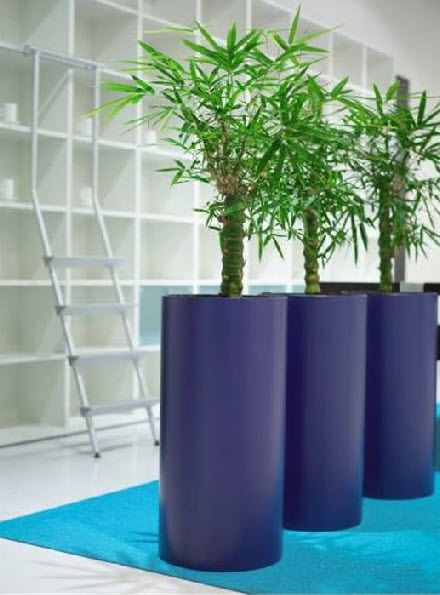 Tall round plant container